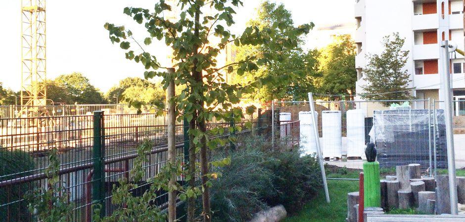 Die Kita Karlsruhe verfolgt gespannt die Bauarbeiten rund um das Gelände