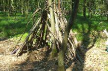 """Räuberkiste"" im Wald"