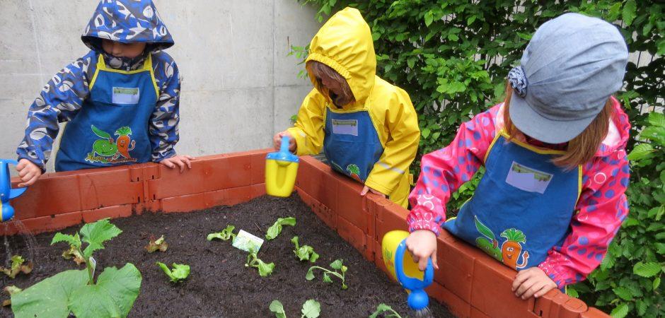 Kita In Karlsruhe Bepflanzt Gemeinsam Seine Hochbeete Pro Liberis