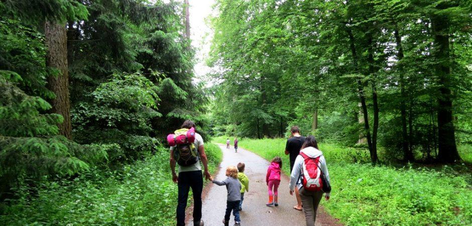 Krippe aus Karlsruhe besucht den Wald