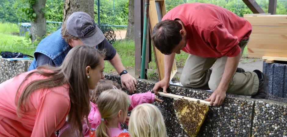 Bienenstock für die Kita Wasserfrösche aus Karlsruhe