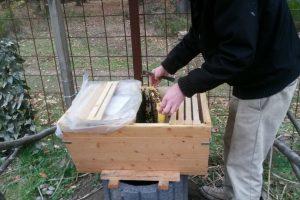 Bienenstock der Kita Grashüpfer