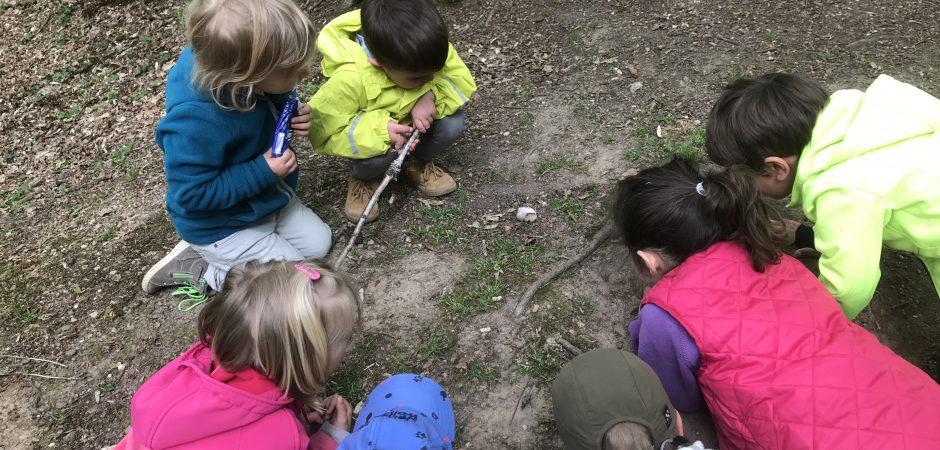 Kinder im Wald beobachten etwas auf dem Boden
